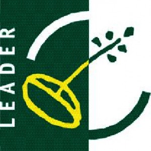 logo leader axe4